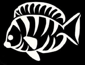 Glitter Tattoo FISH vis