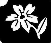 Glitter Tattoo FLOWER DAFFODIL MADELIEF bloem