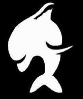 Glitter Tattoo DOLPHIN JUMP dolfijn