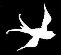 Glitter Tattoo BIRD vogel