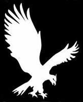 Glitter Tattoo EAGLE arend vliegend