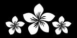 Glitter Tattoo FLOWER PLUMERIA 3 bloem