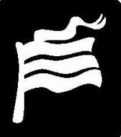 Glitter Tattoo FLAG DUTCH vlag nederland