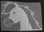 Strijkapplicatie PONY head paardje