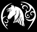 Glitter Tattoo horse moon stars paard