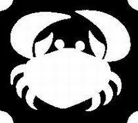 Glitter Tattoo CRAB krab